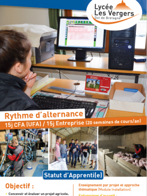 BTS Apprentissage